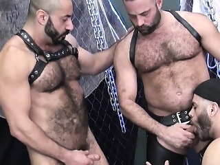 Inked stud barebacked by eager wolf bareback (gay) bears (gay) blowjob (gay)