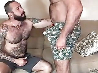 Hairy bears fuck bareback bear blowjob